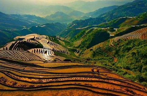 申論熱點:給農業文化遺產更多關注